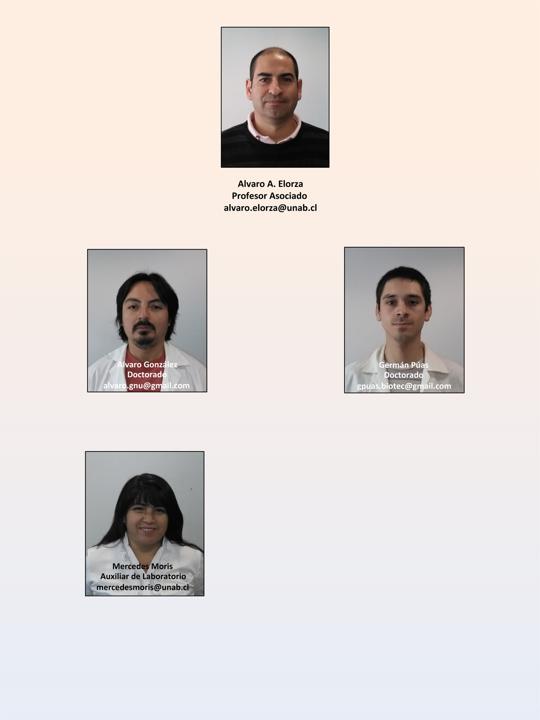 alvaro-elorza-people-cib-unab